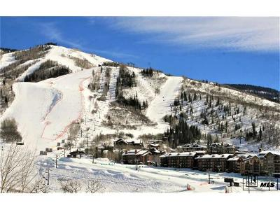Routt County Condo/Townhouse Active: 2420 Ski Trail Ln, #514