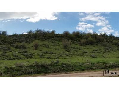 Steamboat Springs Residential Lots & Land Active: Tbd Old Stage Trail