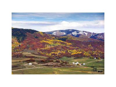 Steamboat Springs Single Family Home Under Contract: 42070 Rcr 129