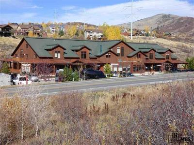 Steamboat Springs Commercial Active: 1169 Hilltop Parkway