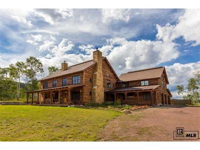 Oak Creek, Phippsburg, Yampa, Toponas Single Family Home Active: 16555 Cr 16