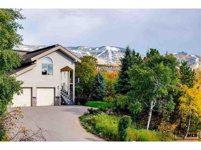 Routt County Single Family Home Active: 30 Alpine Drive