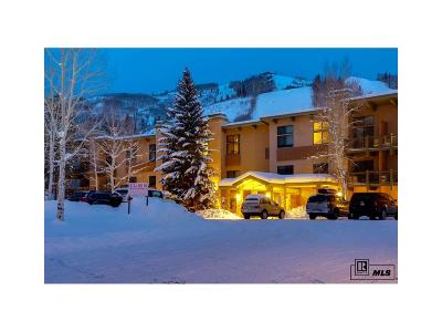 Steamboat Springs Condo/Townhouse Active: 2375 Storm Meadows Drive #b314 #B314