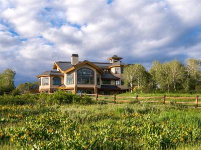 Steamboat Springs Single Family Home Active: 26940 Sundance Trail