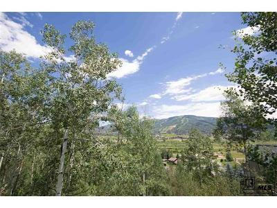 Steamboat Springs CO Residential Lots & Land Under Contract: $249,000