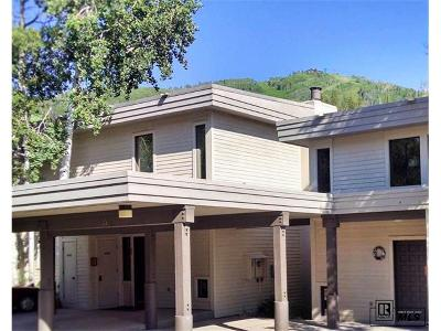 Steamboat Springs Condo/Townhouse Active: 2425 Storm Meadows Drive #21 #21