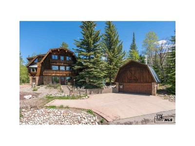 Routt County Single Family Home Active: 2894 Burgess Creek Road