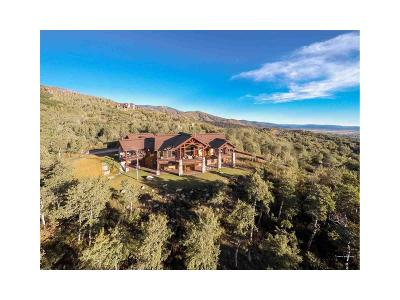 Routt County Single Family Home Active: 175 Deer Clover Lane