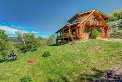 Routt County Single Family Home Active: 24110 Arapahoe Road