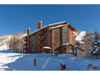Steamboat Springs Condo/Townhouse Active: 2430 Ski Trail Lane #301
