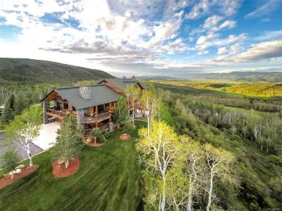 Steamboat Springs Single Family Home Active: 26425 Henderson Park Road