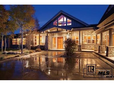 Steamboat Springs Single Family Home Active: 29850 Emerald Meadows Drive