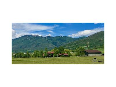 Steamboat Springs Single Family Home Active: 32305 County Road 20