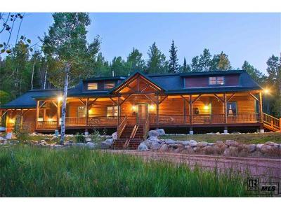Oak Creek, Phippsburg, Yampa, Toponas Single Family Home Active: 31650 Greenridge Drive