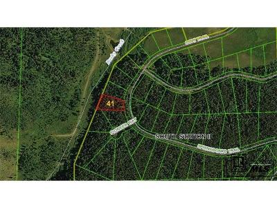 Oak Creek, Phippsburg, Yampa, Toponas Residential Lots & Land Active: Springboard Trail