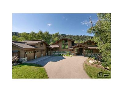 Steamboat Springs Single Family Home Active: 2745 Whitewater Lane