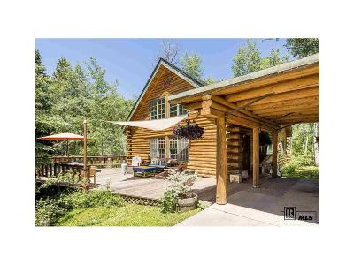 Steamboat Springs Single Family Home Under Contract: 1771 Alexandre Way