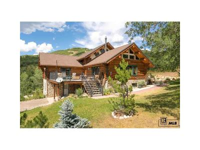 Steamboat Springs Single Family Home Active: 30500 Game Trails Drive