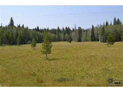 Residential Lots & Land Active: 60130 Crazy Horse Way