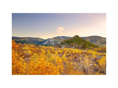 Oak Creek, Phippsburg, Yampa, Toponas Residential Lots & Land Active: 23620 Fraysher Lane