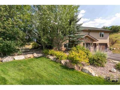 Steamboat Springs Single Family Home Under Contract: 225 Caribou Lane