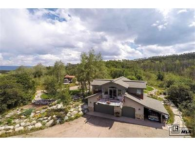 Steamboat Springs Single Family Home Active: 22015 Whitewood Drive W