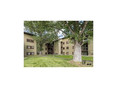 Steamboat Springs Condo/Townhouse Active: 1535 Shadow Run Court #104E