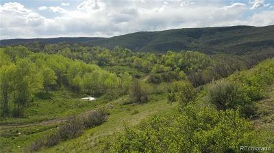 Oak Creek CO Residential Lots & Land Active: $725,000