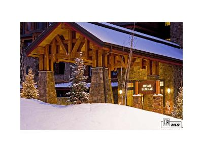 Steamboat Springs Condo/Townhouse Active: 1750 Medicine Springs Drive, #6204 #6204, B
