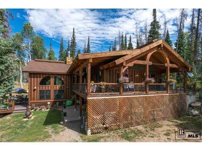 Clark Single Family Home Active: 26635 Katy Court