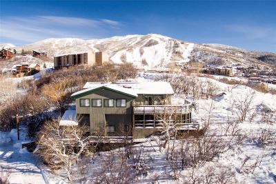Steamboat Springs Single Family Home Active: 1820 Christie Drive