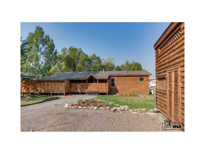 Steamboat Springs  Single Family Home Under Contract: 1360 Indian Trails #58 #58