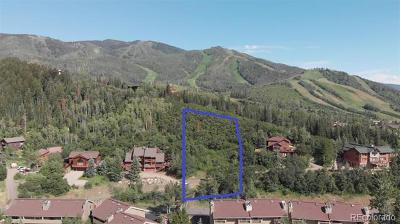 Steamboat Springs Residential Lots & Land Active: 1314 & 1316 Mira Vista Court