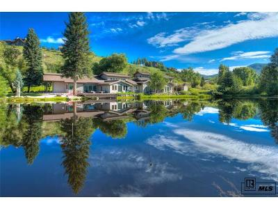 Steamboat Springs Single Family Home Active: 1184 Anglers Drive