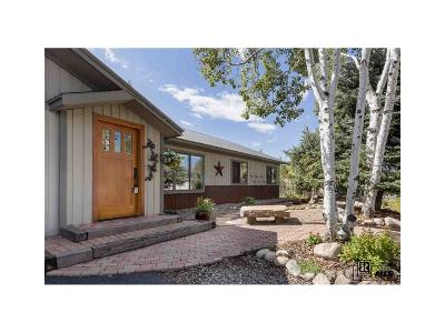 Steamboat Springs Condo/Townhouse Under Contract: 421 Cherry Drive