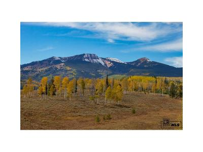 Residential Lots & Land Active: 58950 Button Willow Drive