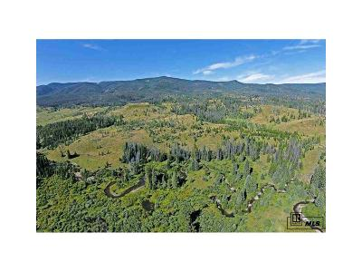 Routt County Single Family Home Active: 17905 County Road 16