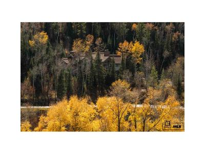 Routt County Single Family Home Under Contract: 31645 Aspen Ridge Rd.