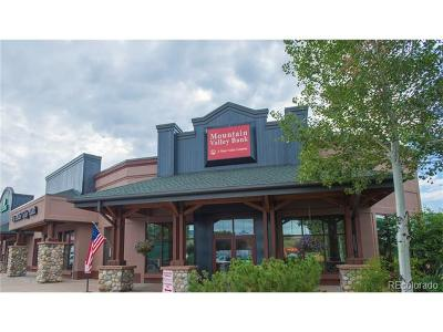 Steamboat Springs Commercial Active: 2201 Curve