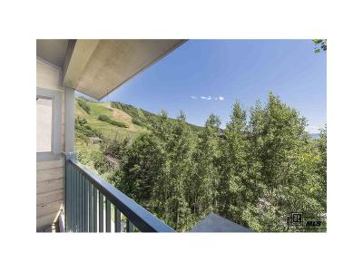 Steamboat Springs Condo/Townhouse Under Contract: 2290 Storm Meadows Drive #1