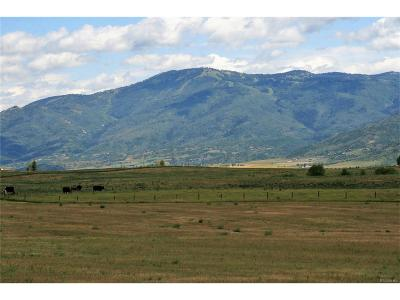 Steamboat Springs Residential Lots & Land Active: 28930 Rcr 14a