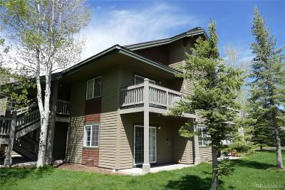 Steamboat Springs Condo/Townhouse Active: 1481 Morgan Court #102