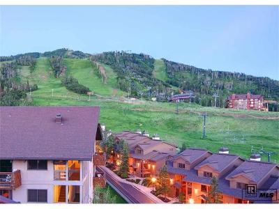 Steamboat Springs Condo/Townhouse Active: 2215 Storm Meadows Drive #500