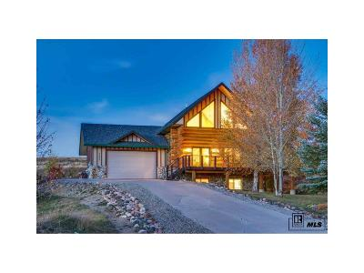 Steamboat Springs Single Family Home Under Contract: 27873 Silver Spur Street
