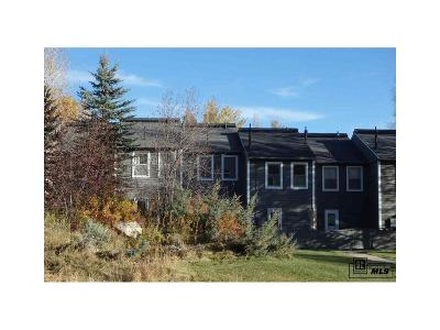 Steamboat Springs Condo/Townhouse Active: 3100 Chinook Lane #7