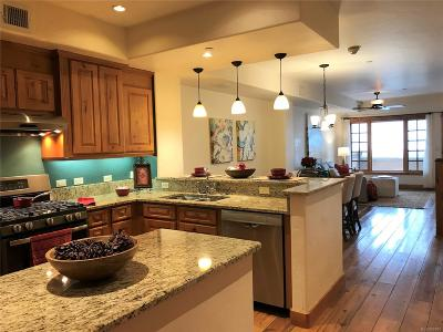 Steamboat Springs Condo/Townhouse Under Contract: 1110 Yampa Street #C