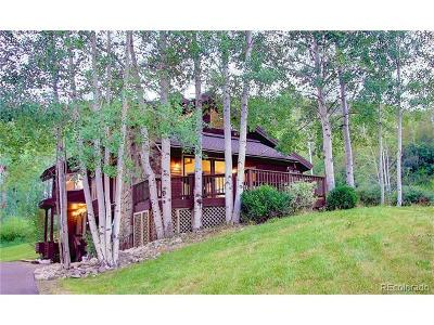 Steamboat Springs Single Family Home Active: 36846 Tree Haus Drive