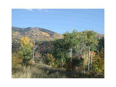 Steamboat Springs Residential Lots & Land Active: 601 Forest View Drive