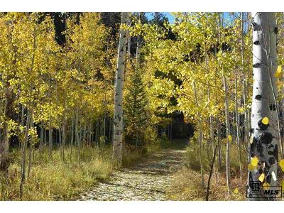 Oak Creek, Phippsburg, Yampa, Toponas Residential Lots & Land Active: Tbd Colt Trail