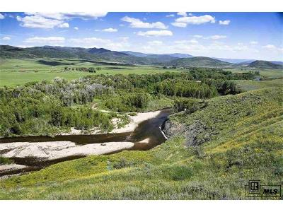 Steamboat Springs Single Family Home Active: 25555 Rcr 54